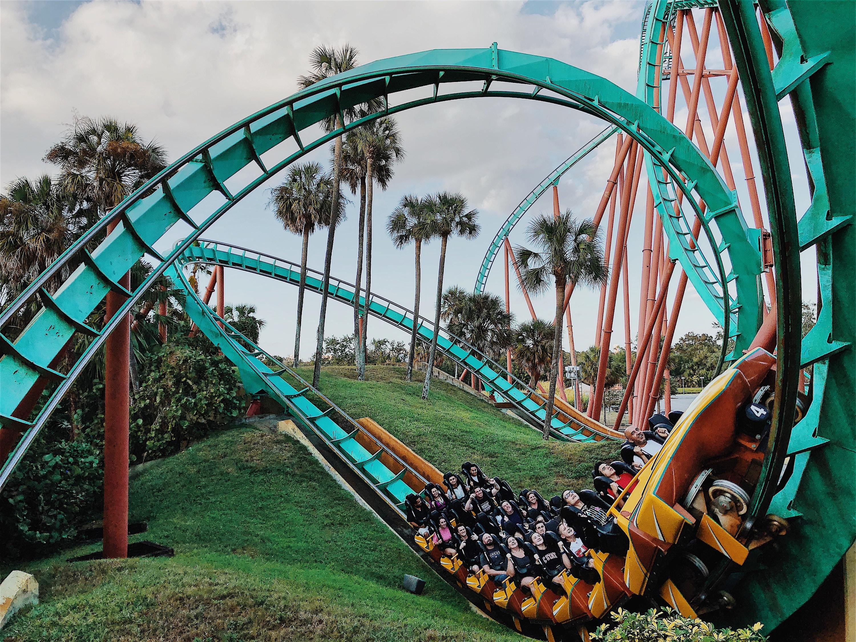 14+ Roller Coaster For Backyard PNG - HomeLooker