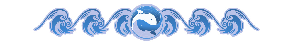 whaleshare_divider.jpg
